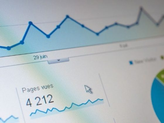 La foto visualizza grafici google analytics